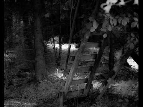 Ladder, Hunsruck