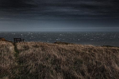 Winter Seat