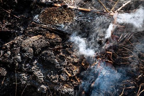 Burning Honeycombs