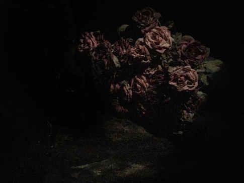 Flowers Underground