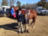 horse16.jpg