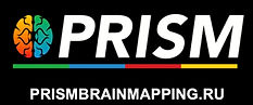 PRISM br.ainmapping.ru new logo40 copy 2