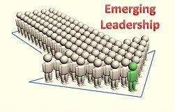The Leadership Paradigm - Emerging Leader