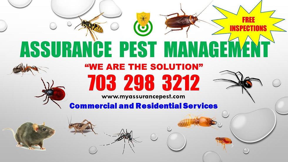 Assurance  Pest  Management.jpg