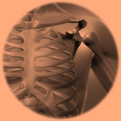 Osteoarthritis - LATAM
