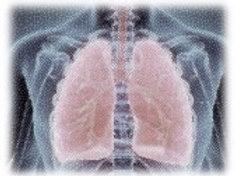 Antibiotics and respiratory diseases - Global
