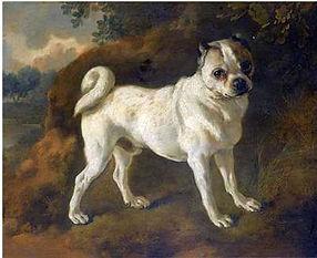 a-pug-by-thomas-gainsborough-1780.jpeg