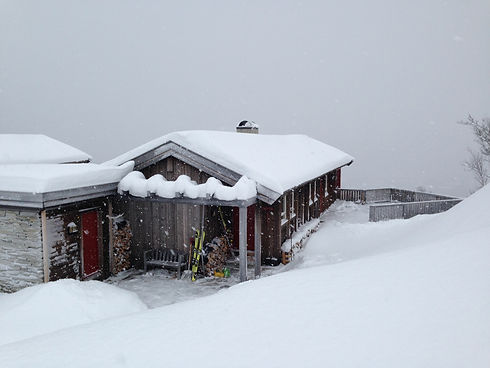 1 enkel hytte.JPG