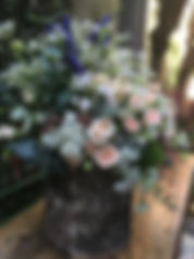 IMG_8361.JPG
