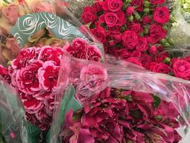 Imagem1-novo-video-youtube.jpg