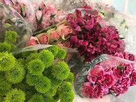 Imagem2-novo-video-youtube.jpg