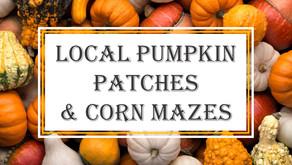 Local Pumpkin Patches & Corn Mazes