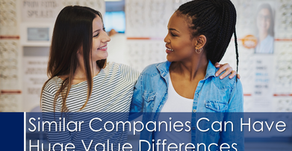 Similar Companies Can Have Huge Value Differences