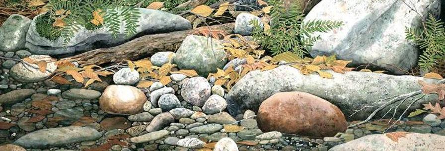 Upstream Still Water