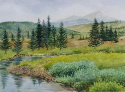 Yellowstone River Meadows