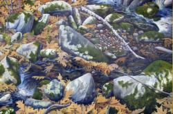 Moss Laden Brook