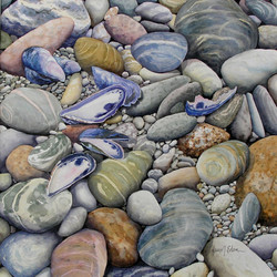 Mussels and Pebbles 14 x14 watercolor