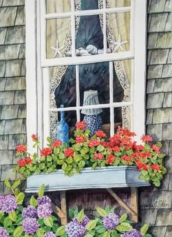 Cottage geraniums