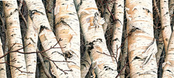 Trunk Patterns # 15