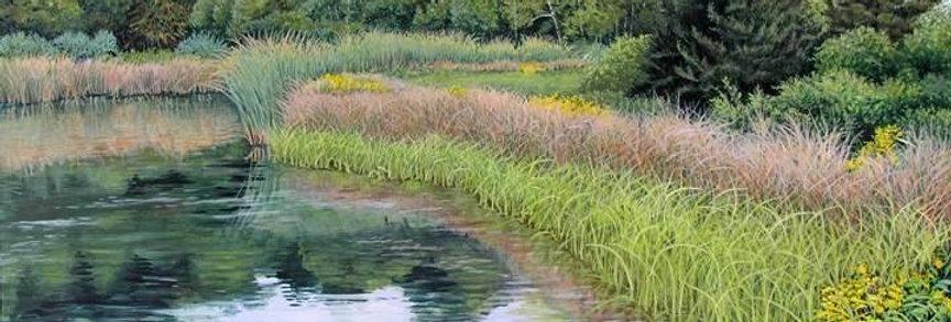 September Pod Grasses