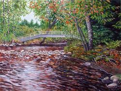 Salmon Brook Autumn