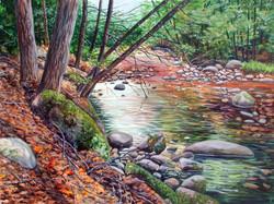 Salmon Brook Silence