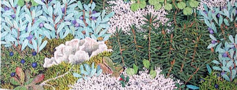 Tundra Delicacies # 21