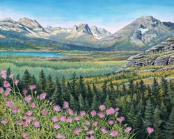 Glacier Vista