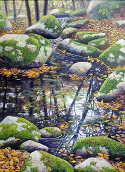 Autumn Stream, Reflections