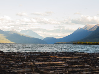 Kinbasket Lake-1.jpg