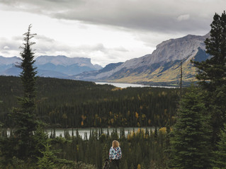 Athabasca Valley-2.jpg