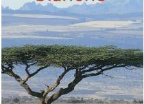 #36 - Kenya