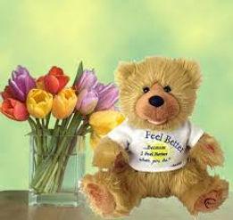 noah bear.jpg
