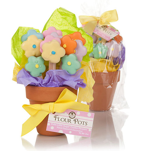 Mother's Day Flower Pot of Edible Cookies LF-FP001