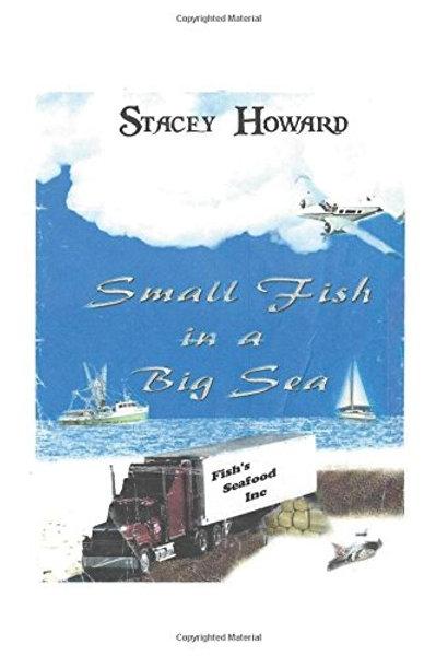 Small Fish in a Big Sea