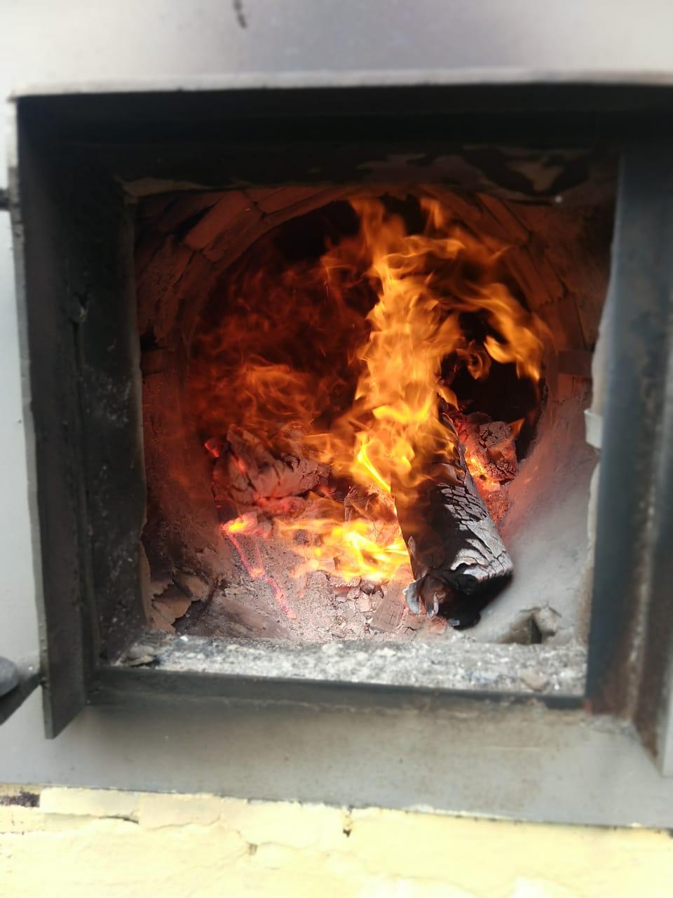 Biomassa e Energia