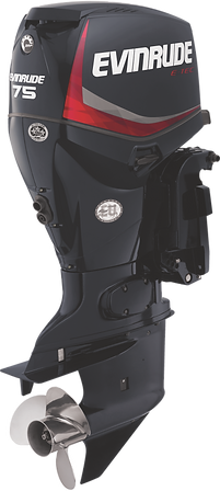 Evinrude E-TEC 75HP Graphite
