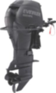 Evinrude 55 MFE Multi Fuel Engine