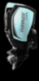 Evinrude E-TEC G2 225H.O.