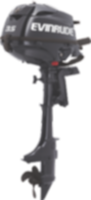 Evinrude 3.5HP Tiller Steer Ocean Pearl & Graphite