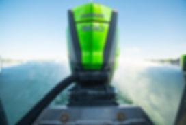 Evinrude-300-colore-green.jpg