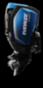 Evinrude E-TEC G2 250H.O.