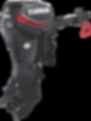 Evinrude E-TEC 40 HP Tiller Steer Graphite
