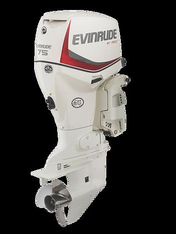 Evinrdue E-TEC 75HP Ocean Pearl