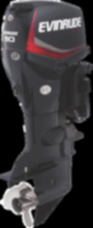 Evinrdue E-TEC 90HP Graphite