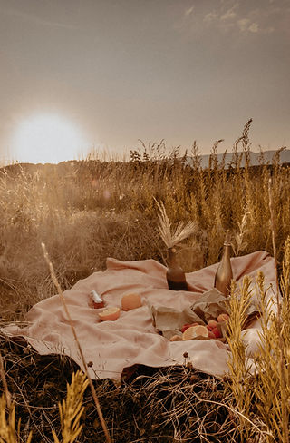 warm sunset image of a blacket in a field of tall brown grass, with fruit on the blanket