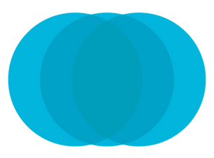 LM Overlay Circles 2.png