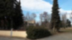 Grundstück (3).jpg