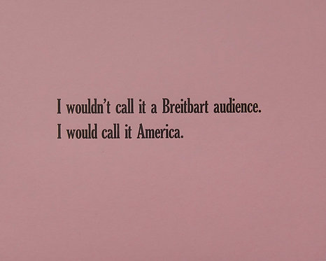 I wouldn't call it a Breitbart audience. I would call it America.