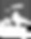 AI_Logo_WEB_320x400.png